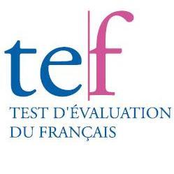 Logo TEF